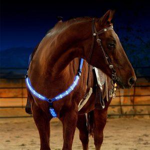 Borstplaat LED paard